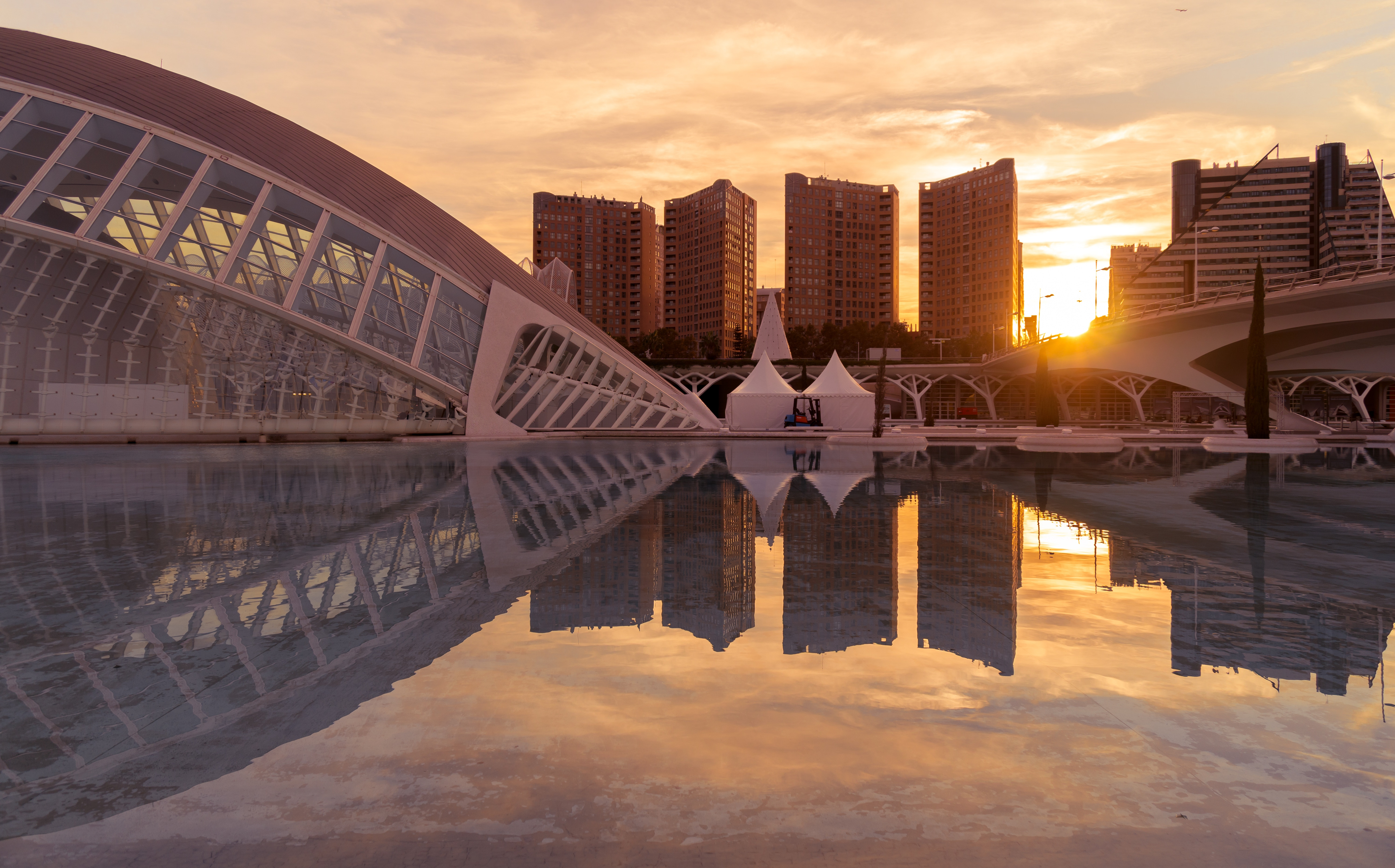 Insider's tips – Why you should visit Valencia